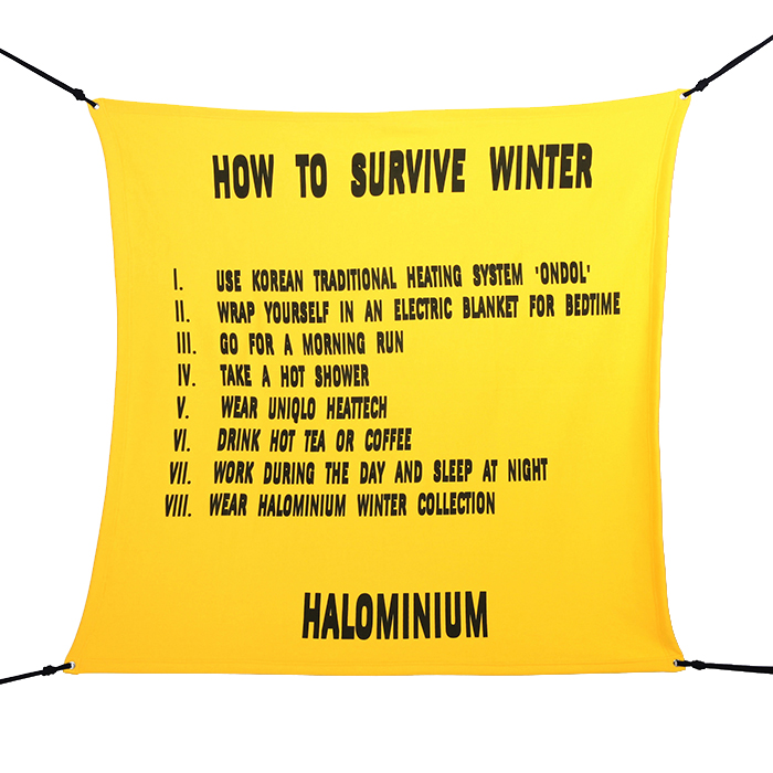 HOW TO SURVIVE WINTER (2016)